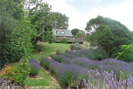 Tranquil and relaxing Lavender Studio - Takamatua - Stuga