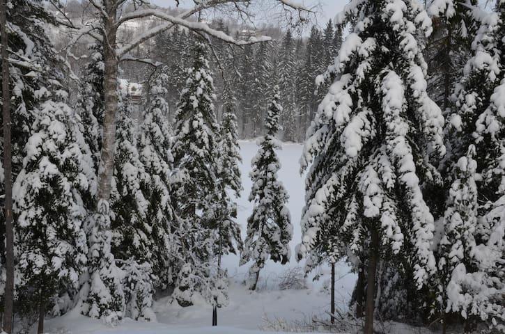 Lakefront Mont Tremblant Cottage - Lac-Supérieur - Blockhütte