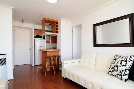 Modern comfortable apartment - Santiago