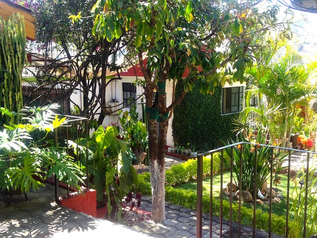 Brand new fully furnished apartment - Oaxaca - Apartamento