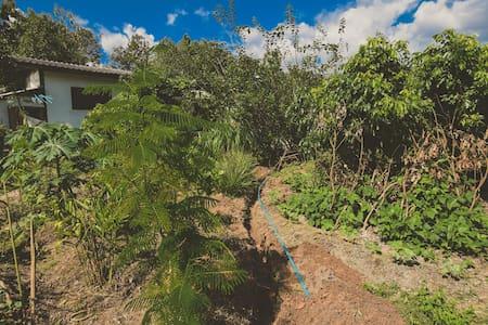 Buti farm homestay commune 4 of 4 - Doi Saket