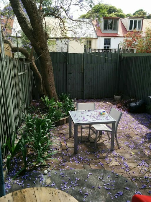 A great spot to enjoy breakfast in the garden with neighbor's cat and at night, the possum