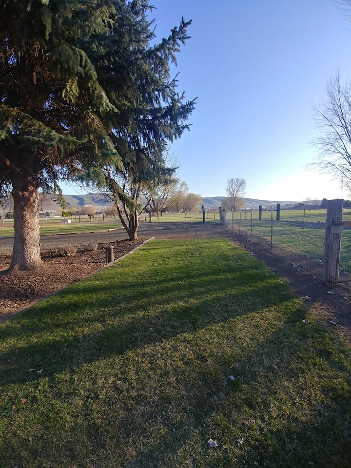 Equine Camping with Pasture in the Country
