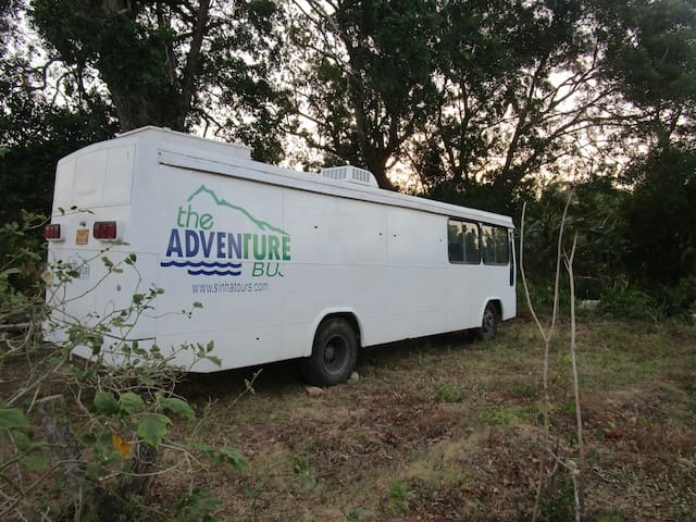 Adventure Bus -  All Island!