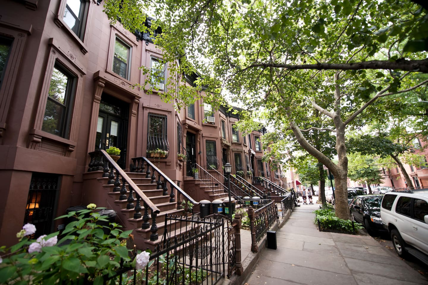 Beautiful, quiet, tree-lined block steps from public transit