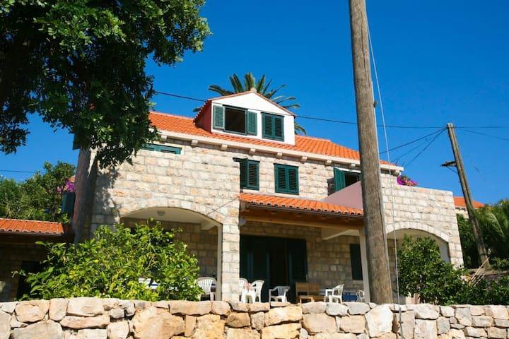 Stone House Villa Kolocep - Kolocep - Ev