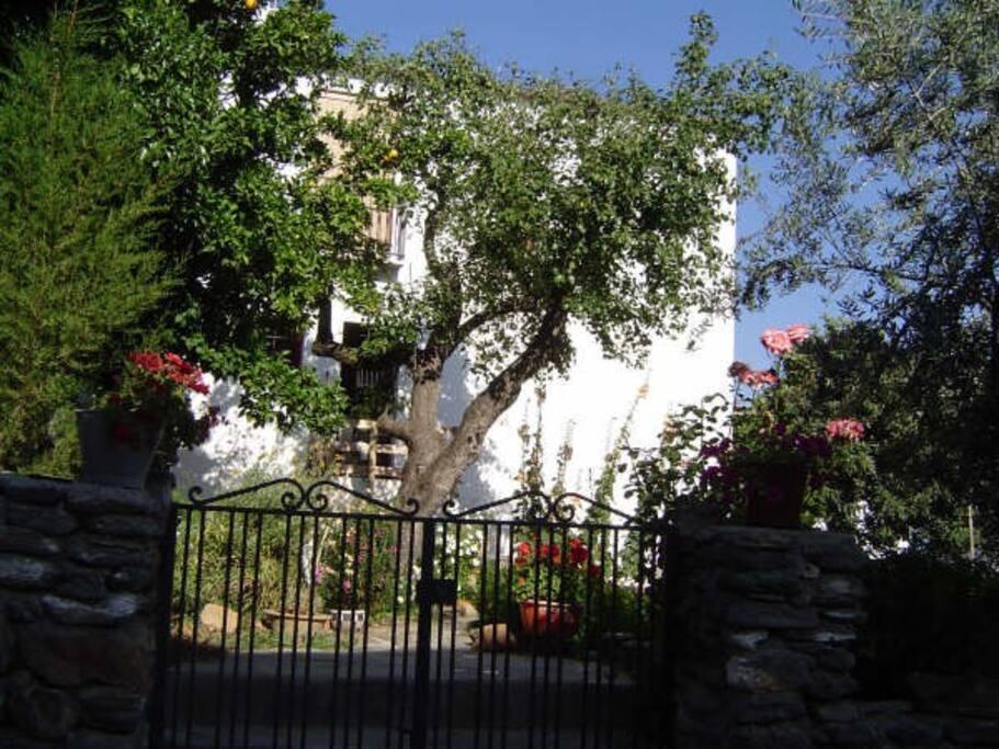 La casa está rodeada de un jardín-huerto