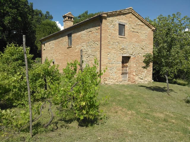 Casa Eva - Rustic Farmhouse  - Sant'Angelo in Pontano