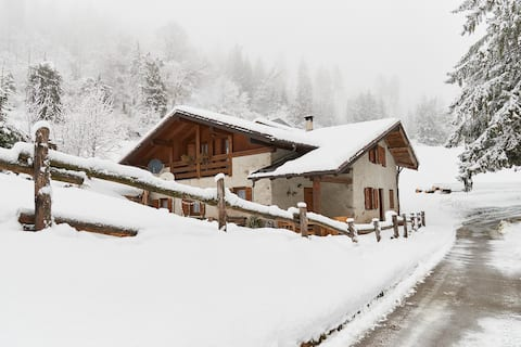 Traditional Mountain Home with WIFI!