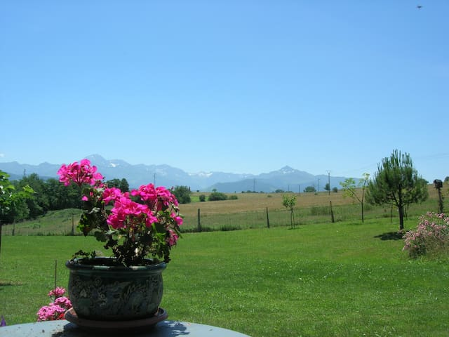 Un séjour dans les Pyrénées - Cieutat - Huoneisto