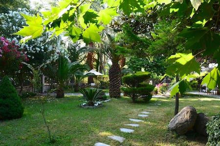 Marina's house - Platamon - Casa