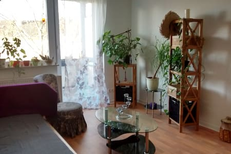 Calm bright and close to Uni - Kassel - Appartement