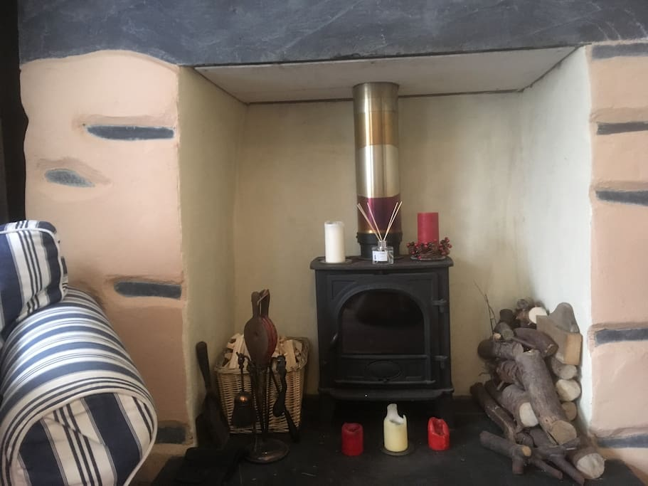 The stove is suitable for wood burning. There is a supply of firelighters, and there is kindling and wood at the rear of the house, but if a lot is used, I would be very grateful if some would be replaced.