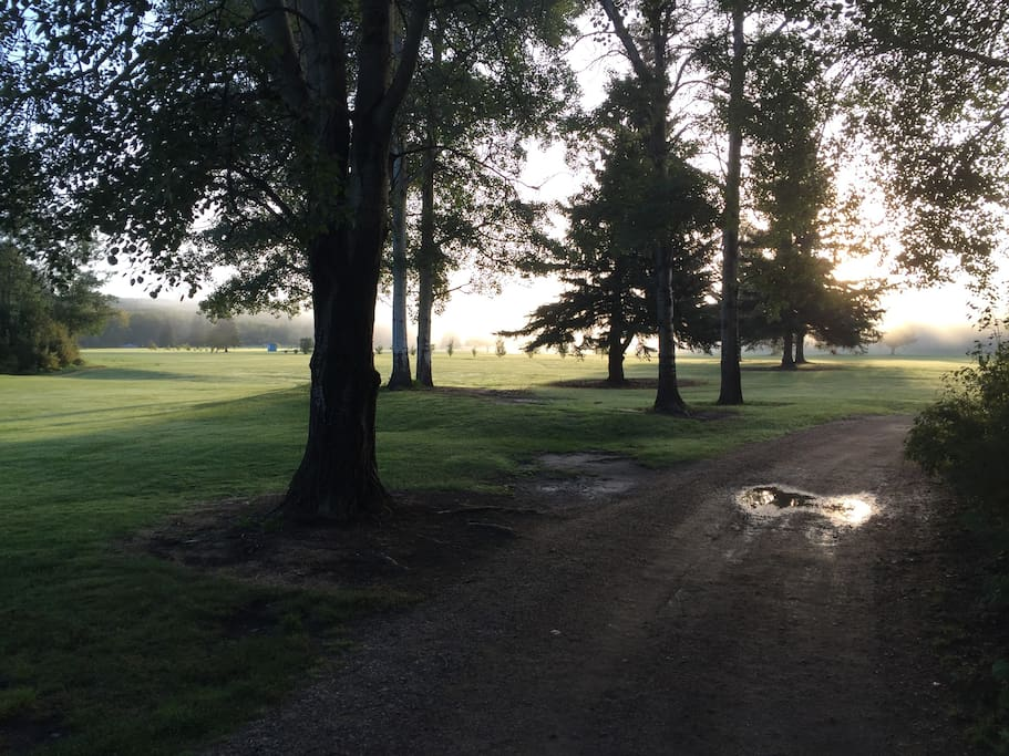 Golf course during sunrise