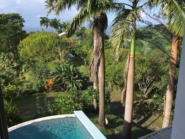 Rainbow Loving Caribbean Lifestyle - Parlatuvier - Villa
