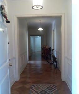 Spacious apartment in Bellas Artes - Apartment