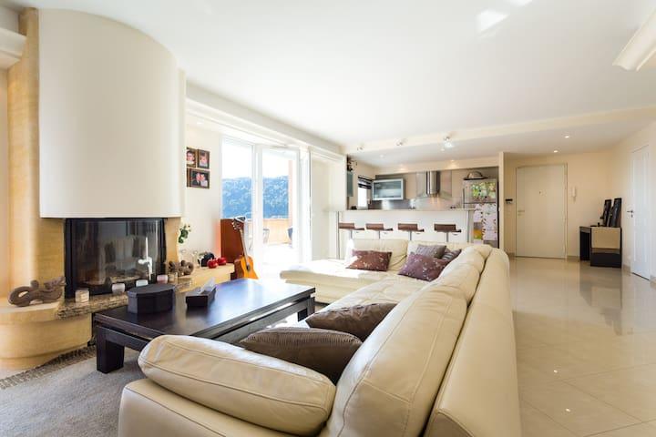 Beautiful penthouse apartment