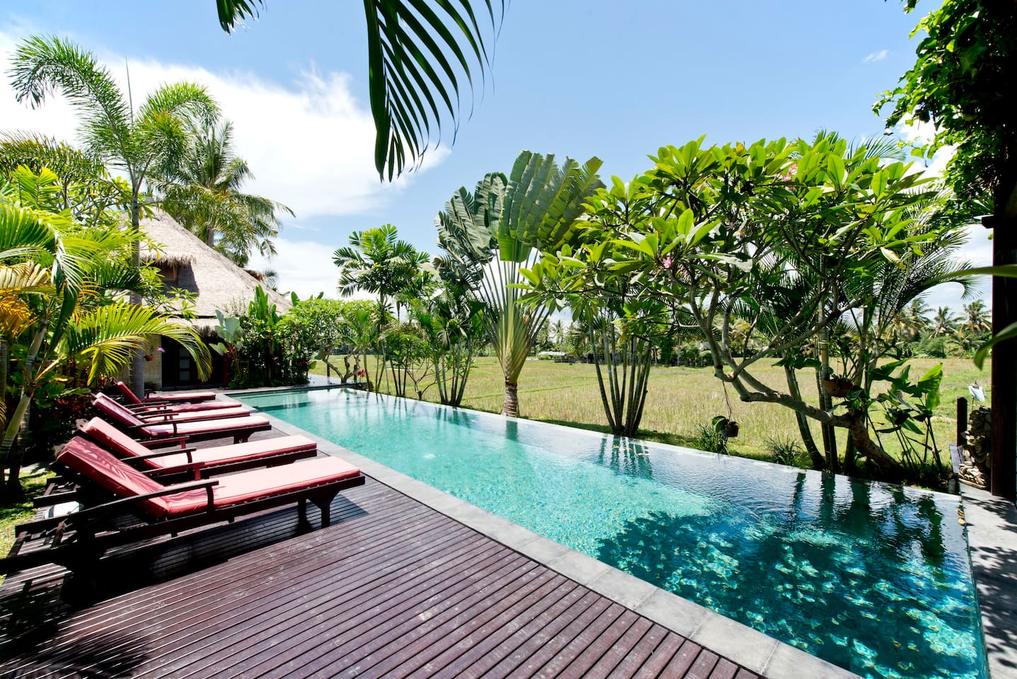 The best unobstructed views in Ubud