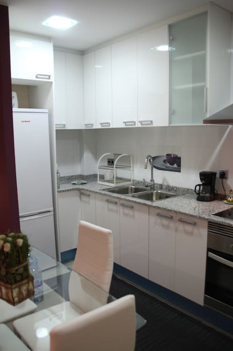 The Kitchen Area showing the refrigerator