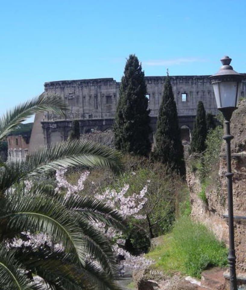 il Colosseo due passi a piedi