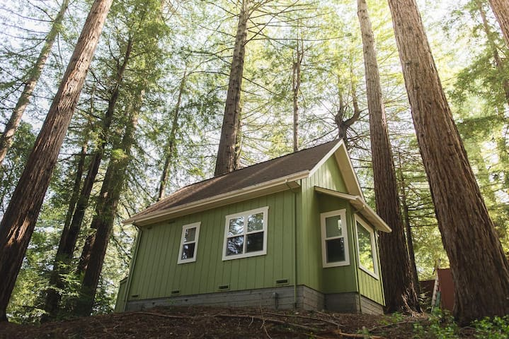 Private Guest-House in the Redwoods with Generator