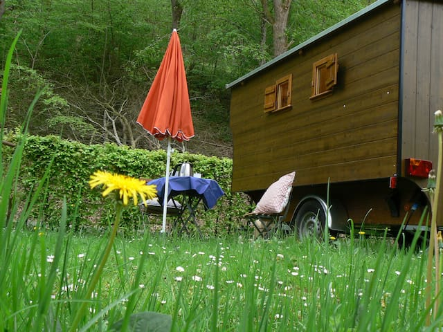 Der Bienenwagen, etwas ganz besonderes - Wildberg