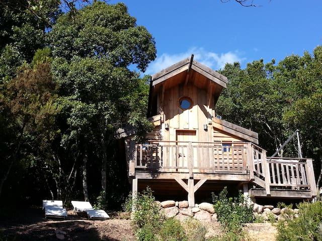 cabane sur pilotis écologique 1 - Porticcio - Chalé