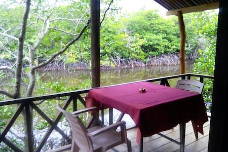Бунгало в джунглях - Hikkaduwa