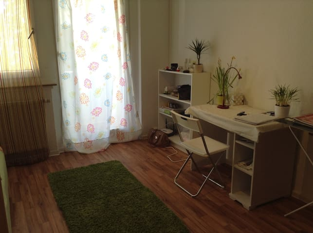 Studio 30 sqm with kitchen - Chemnitz - Byt