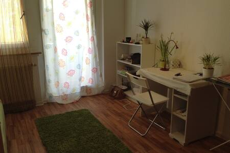 Studio 30 sqm with kitchen - Chemnitz