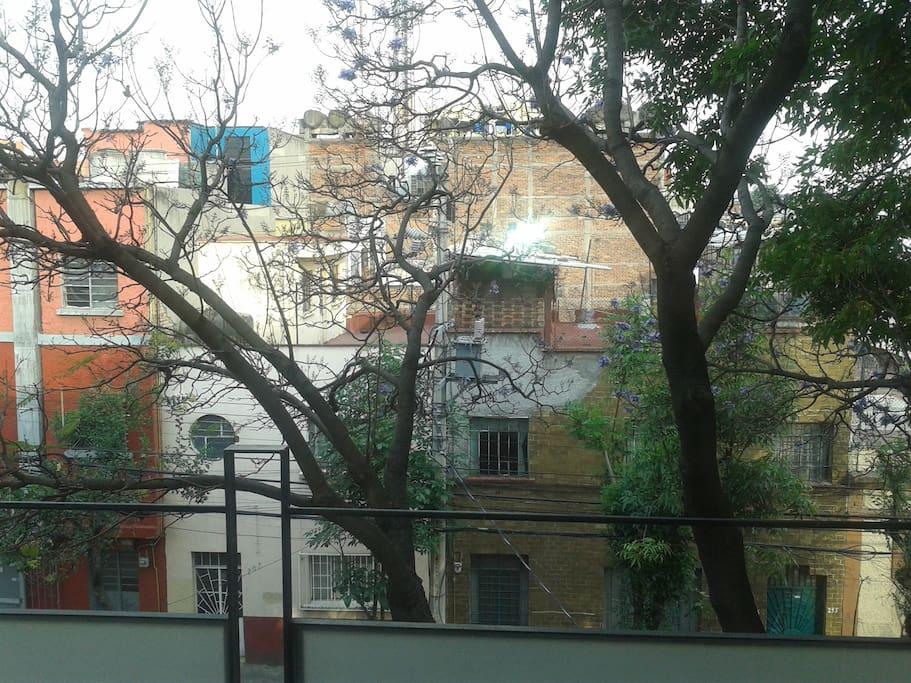 esta es tu vista desde el balcón