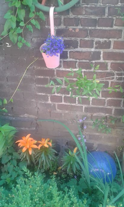 Inspirationen aus dem Garten
