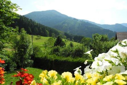 Ferienwohnung am Griesbach / Simonswald - Simonswald - Lägenhet
