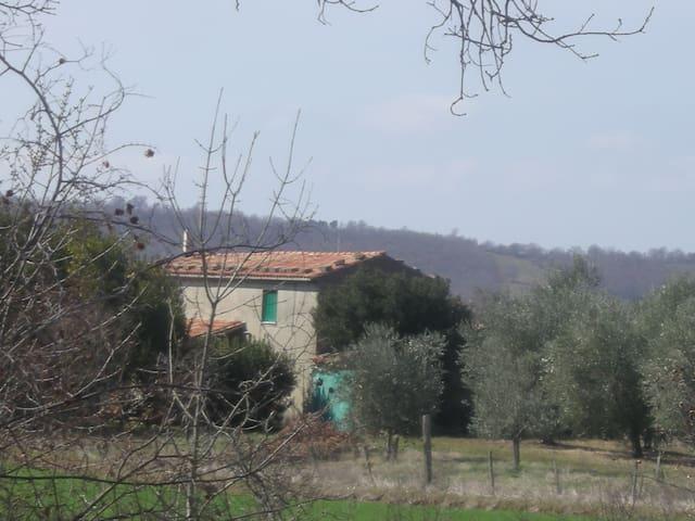 """farm """"IL FABBRETTO"""" - Manciano - House"""