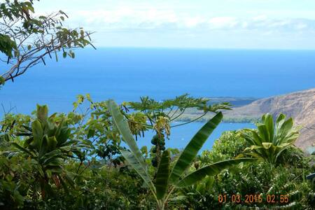 Ah Paradise B&B - The Palm Room - Honaunau-Napoopoo
