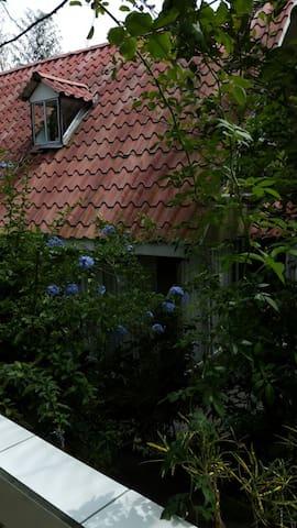 Alquiler de casa de campo estilo chalet (PHONE NUMBER HIDDEN) - Desamparados