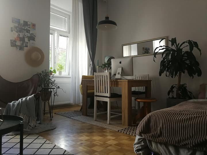 Cozy flat in the heart of Vienna
