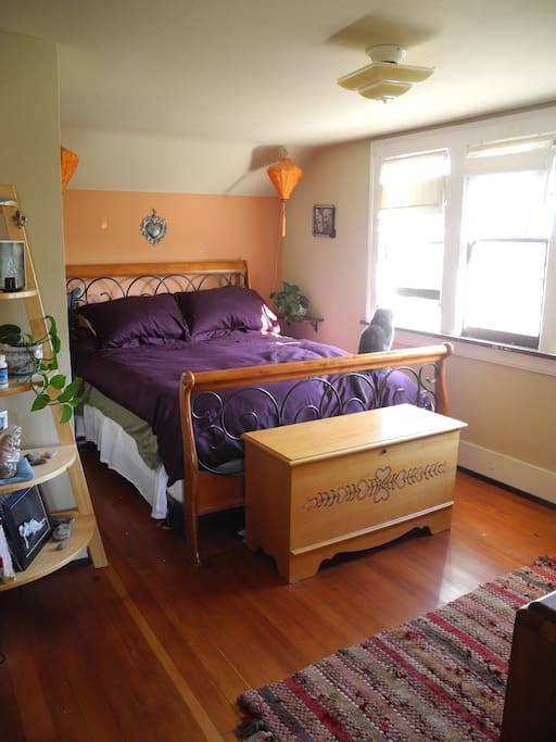 The main bedroom is a delightful sanctuary with a cat to share the space.