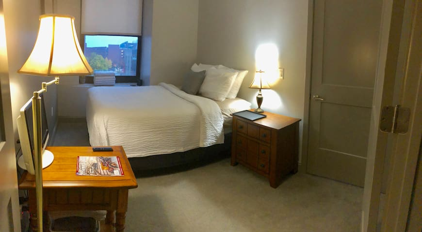 Convention District Crash Pad - Downtown Rochester