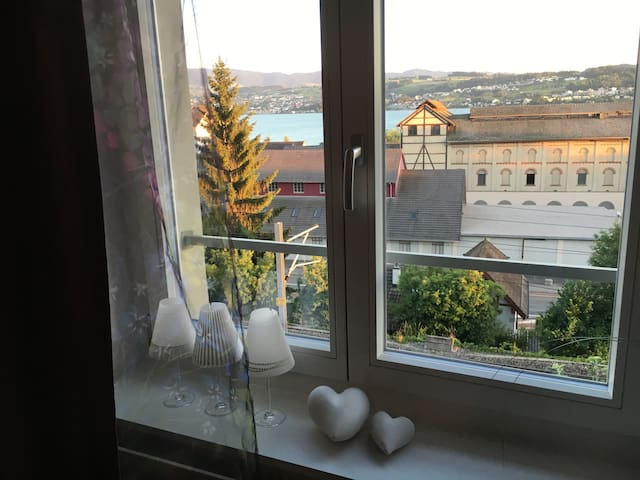 Sunny room with lake view, 17 minutes from Zurich