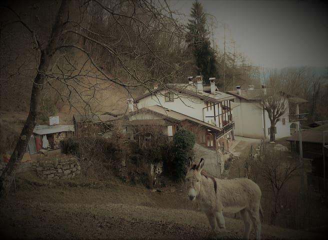 I Tre Mus di Colnet - Roncoi - House