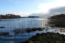 Templehouse lake 4 miles from Ballymote. Best Bream Roach and pike fishing