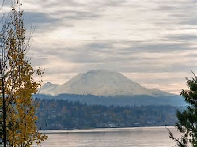 Mt Rainier from OO Denny park