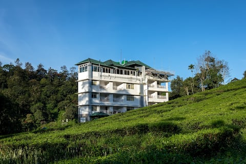 A Resort with amazing Tea plantation & Valley view