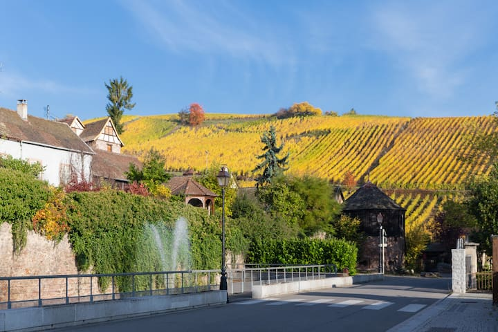 RIQUEWIHR - Large apartment in the vineyard! - Riquewihr - อพาร์ทเมนท์