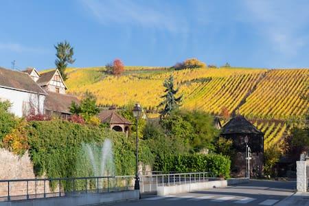 RIQUEWIHR - Grand appartement au cœur du vignoble! - Riquewihr - Daire