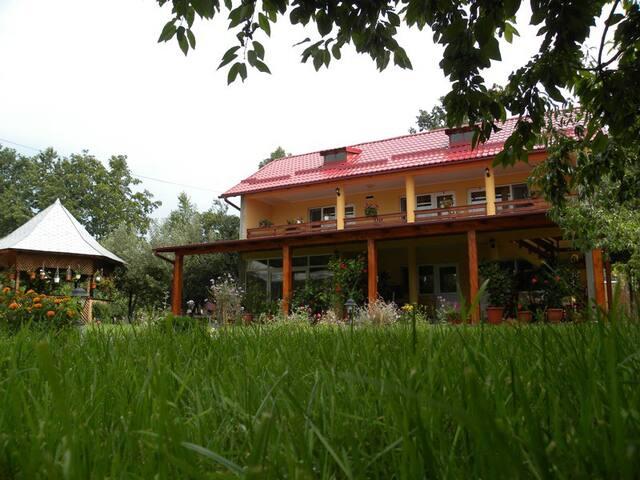 Criveanu Guest House