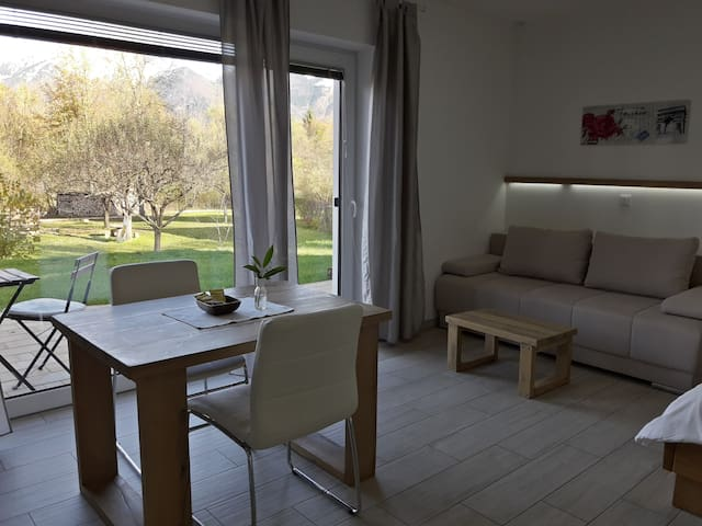 Comfort Studio with Terrace and Garden view
