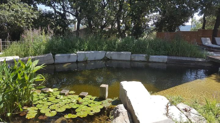 Petite maison ombragée avec bassin naturel