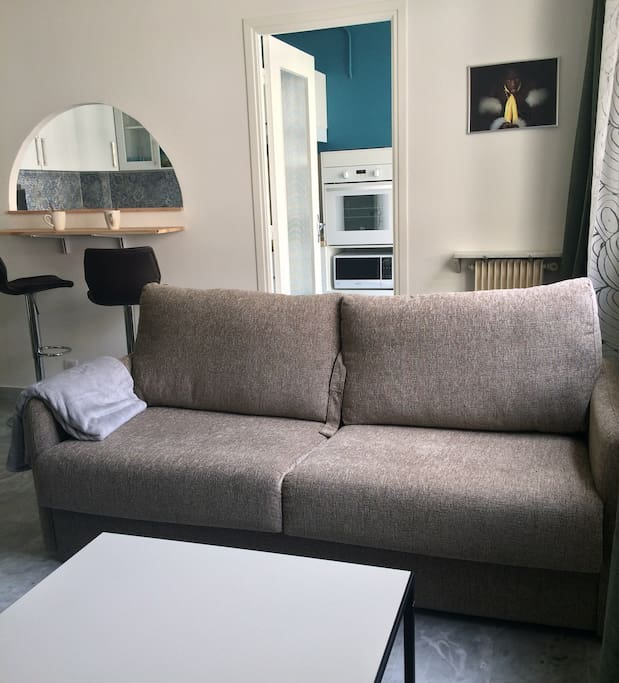 Nice living room with comfortable sofa bed for 2